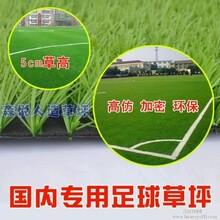 湖南省森悦人造草坪幼儿园、足球场、优惠促销
