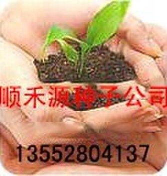 北京顺禾源种子销售有限公司