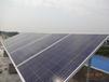 太阳能家庭发电系统分布式光伏并网电站所罗门一站式服务