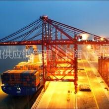 马来西亚泰国进口采购食品进口清关物流专家团队-威盟供应链管理深圳公司