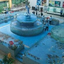 廣州海鮮池訂做,廣州哪里訂做海鮮池,廣州哪里訂做海鮮池最便宜最好,廣州別墅庭院魚池訂做圖片