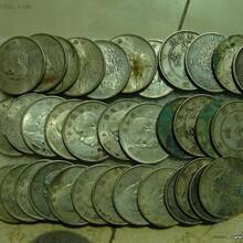 高价收购银元,回收袁大头,小头,龙洋,有的和我联系图片