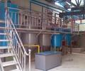 供应环保1-500型一级食用油加工精炼设备