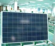 太阳能电站专用270W多晶太阳能电池板组件哪家好图片