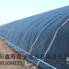 延津几字钢温室建造中心日光温室建造造价