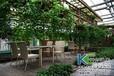 滨州温室大棚、蔬菜大棚造价,生态餐厅造价设计