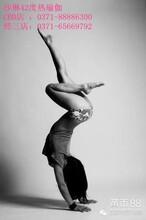 瑜伽,您练与不练,效果十年后的七夕见分晓