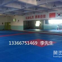 北京厂家供应比赛型跆拳道垫子图片