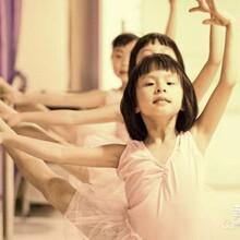 东营拉丁舞东营拉丁舞培训东营舞蹈学校