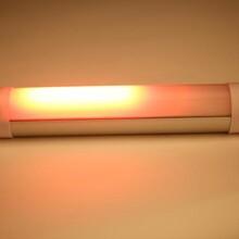 路障指示闪灯,红蓝爆闪灯,LED野营灯,员工福利礼品,工厂批量生产灯图片