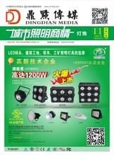 重庆特价单科大功率足功率高亮度高光效100W200W300WLED投射灯散光灯高杆灯厂家报价